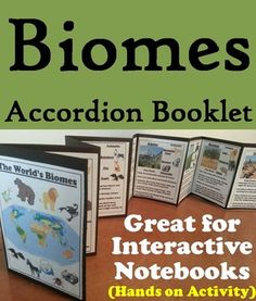 This Biomes Accordion Booklet is a fun hands on activity for students to use in their interactive notebooks. Students may research different facts about each biome and write what they find on the provided blank lines. A biome booklet with answers is also included.