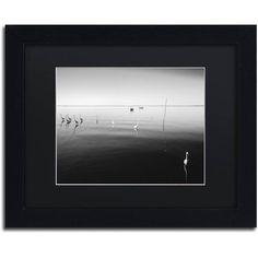 Trademark Fine Art 11 Herons Canvas Art by Moises Levy Black Matte, Black Frame, Size: 11 x 14, Multicolor
