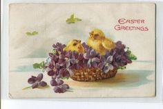 Easter Chicks in basket with violets by sharonfostervintage, $2.00