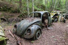Bastnas Car Graveyard: Sweden's Vast Vehicle Cemetery Boasts '1,000' Abandoned Cars
