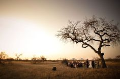 Wedding ceremony site setup, if possible, I would love a photo like this to set the scene!