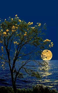 En la inmesidad, la luz da tranquilidad