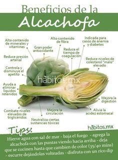 Beneficios de la Alcachofa #vidasaludable #alcachofa