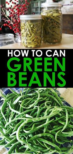 Canning green beans is an easy summer activity that allows you to enjoy them all year long! Find out how to can green beans in a pressure canner, as well as how to deal with the fact that green beans are not ready to harvest at the same time. Preserving Green Beans, Cooking Green Beans, Preserving Food, Can Green Beans, Bush Beans, Cucumber Recipes, Thing 1, Pressure Canning, Canning Recipes