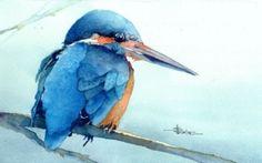 Martin by Stéphane Heurion Watercolor Bird, Watercolor Animals, Watercolor Paintings, Art Aquarelle, Bird Applique, Keys Art, Hyperrealism, Animal Totems, Unique Animals