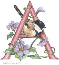images about Artist - Carolyn Shores Wright on . Alphabet Art, Letter Art, Creative Lettering, Illuminated Letters, Bird Art, Beautiful Birds, Watercolor Paintings, Art Projects, Illustration Art
