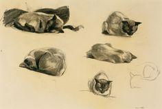 Edward Hopper, Cat Study, 1941