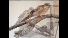 3D art. illusion paintings. Eka Peradze.