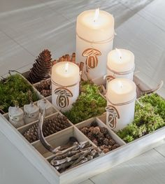 cute centerpiece with moss and acorns for dinners outside