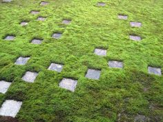 Stone and moss garden at Tofukuji Temple in Kyoto  東福寺