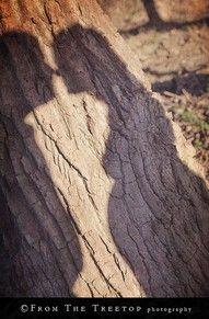 Maternity Photos - More Shadows