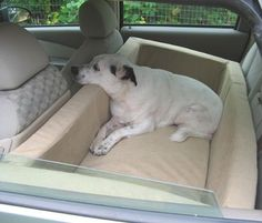 Once you've got a trained Dynamic #Dog, you'll want to take her everywhere in this comfortable backseat bed for your pooch! www.mydynamicdog.com
