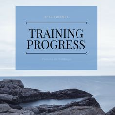 I'm training to hike the Camino de Santiago next year. I've never done anything like this before, but I have been blogging about my preparation. Follow my latest training progress. www.shelsweeney.com