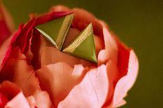 Sedge - Hand Painted Wooden Stud Earrings – Naoi