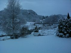 The first snow flakes, covering everything in white, pure beauty!  #regionstavanger #norway