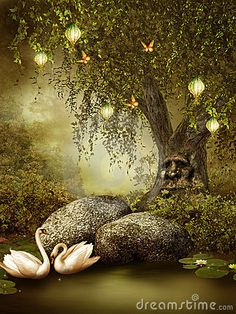 enchanteyd garden  | Enchanted Pond Royalty Free Stock Image - Image: 21838096