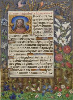 Illuminated Letters, Illuminated Manuscript, Book Of Hours, 15th Century, Art Blog, Illustrations, Catholic, Medieval, Miniatures