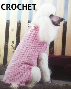 Cute dog sweater for crochet