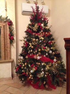 Il mio albero!