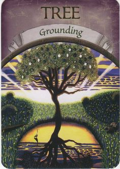 TREE (Grounding) - Earth Magic Oracle Cards