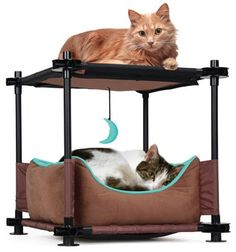 Sleeper Steel Cat Condo : Cat Houses And Condos.  Cozy and cushioned bed for all your cat's napping needs Soft and strong fleece for resting and playing along with heavy duty coated fabric that resists tearing 8 easy fittings, 12 pipes and 4 stability caps Attaches to other panels to connect multiple units Overall dimensions are 17.25 inches high x 17.75 inches wide x 17.75 inches deep