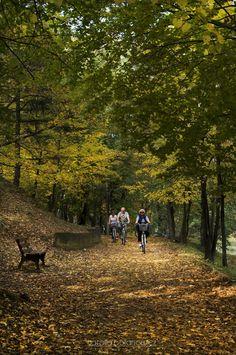 jesienią parki są najpiękniejsze | Bytom | fot. Natalia Bojanowicz