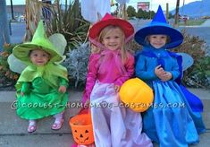 Cutest Flora, Fauna, and Merryweather Fairy Costumes...