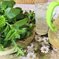 Parsley, Celery, Remedies, Food And Drink, Herbs, Homemade, Vegetables, Health, Plants