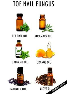 Nail fungus   Young living   Pinterest   Essential oils ...