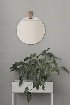 Discover the Plant Box by ferm Living in the interior design shop. Order the ferm Living all-rounder now. Lines Wallpaper, Graphic Wallpaper, Modern Wallpaper, Print Wallpaper, Designer Wallpaper, Round Wall Mirror, Round Mirrors, Large Mirrors, Plant Box