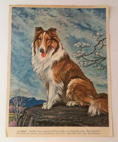 #vintage #lassie #collie #painting
