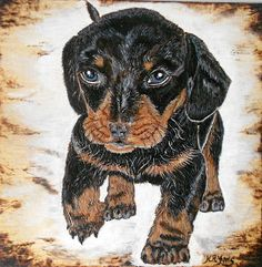 "krynabijoux: ""Patrocle"" Art Deco, Dogs, Animals, Cute Animals, Animales, Animaux, Pet Dogs, Doggies, Animal"