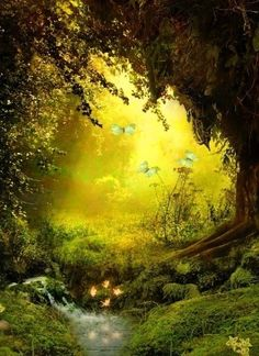 carasposa:  Magic Forest on We Heart It - http://weheartit.com/entry/45634285/via/alisa_murashckina Hearted from: http://pinterest.com/pin/96334879501151643/