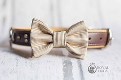 Gold Dog Bow Tie   Luxury Dog Gift   Wedding Bow Tie   Christmas Bow Tie   Formal Bow Tie   Gift For Pet   Dogs UK   Dog Wear   Bowtie Bow Tie Wedding, Dog Bows, Dog Wear, Dog Bandana, Dog Gifts, Pet Dogs, Wedding Gifts, Gold, Etsy