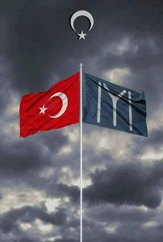 Turkey Flag, Tiger Pictures, Republic Of Turkey, Michael Jordan Basketball, Hd Wallpapers 1080p, Warrior Quotes, Islamic Pictures, Ottoman Empire, Galaxy Wallpaper