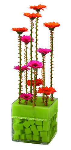 Modern Miniature Gerbera Design www.tablescapesbydesign.com https://www.facebook.com/pages/Tablescapes-By-Design/129811416695
