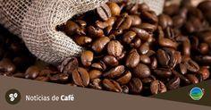 #Governo espera concluir vendas de café neste mês; estoques caem a níveis mínimos - Notícias Agrícolas: A Rede Governo espera concluir…