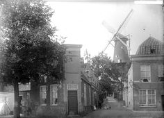 De Wijkstraat rond 1900, gezien van de Nieuwe Beestenmarkt naar molen 'de Valk'. Het straatje is in 1906 gesloopt t.b.v. de uitbreiding van de veemarkt op de Lammermarkt.