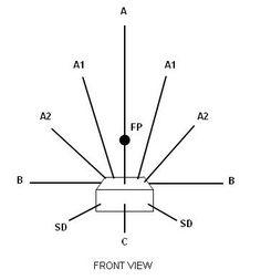 Triangular Floral Form