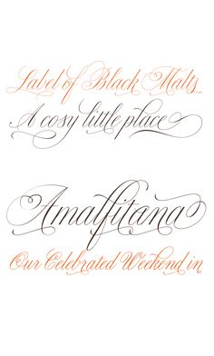 so many script fonts here! | Sudtipos