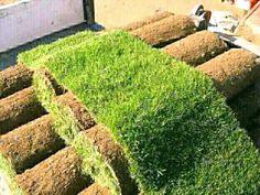 We supply & deliver ROLL on LAWNS...STONES..GARDEN SOILS  GRASS PRICES  KIKIYU......................................R35 per m2  BU...200460178