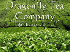 TEA LOVERS UNITE - DRAGONFLY TEA COMPANY HAS ONE OF PHOENIX'S LARGEST SELECTIONS OF TEA - $20 WORTH OF GREAT TEA ONLY $10 FROM MONSOONDEALS.COM