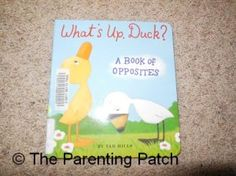 Cover of What's Up, Duck: A Book of Opposites