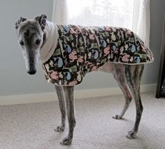 We've been having a particularly cold January in Vermont, so I decided to make some jammies for my Greyhound, Kuzco.  For those who are not familiar with the breed, Greyhounds have no …