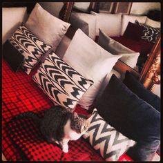 Roma, casa mia. My style. Nuovi cuscini Ikat presi a Istambul.