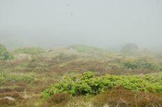 Wangerooge - the fog