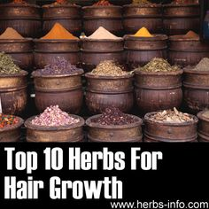 Herbs For Hair Growth - detailed list with research, references and background info.