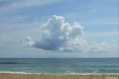 Outer Banks NC Local Artists Facebook post 8/31/14: A Day at the Beach.   Photographer credit: Groetsch.