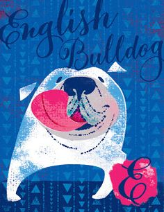 E is for English bulldog | illustration by debra ziss: Dogs A-Z (to be continued...)