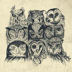 desenho de coruja tumblr - Pesquisa Google